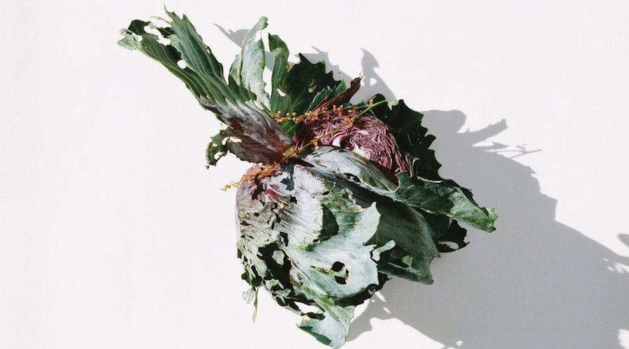 Grönsak